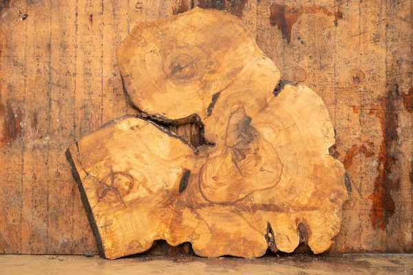 Ash Cookie wood slab 38in width by 49in length